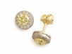 Rround Yellow Diamonds and Round Brilliant Diamond Earrings